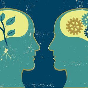Denken In Groei Of Grenzen